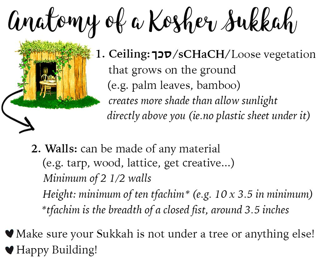 How to build a Sukkah by Jewish Latin Princess