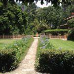 Shabbat en Guatemala