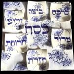 Sari's Seder Plate