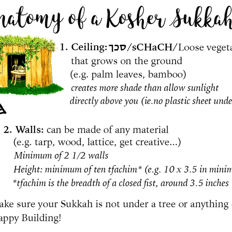 How to build a Sukkah by Jewish Latin Princess